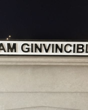 I Am Ginvincible Road Sign